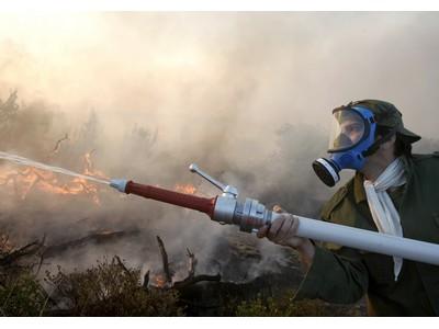 Harc a tűz ellen