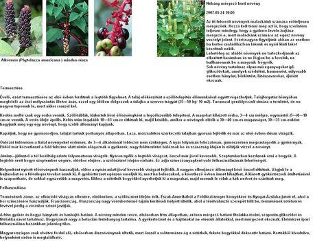 phytolacca_americana5 alkörmös