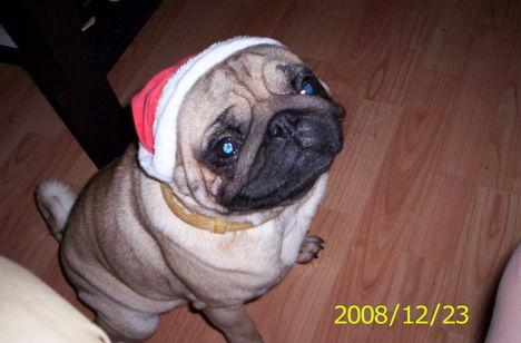 Karácsony 100_4144