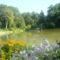 Zirci arborétum 2009 aug. 8 4
