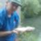1 kg os domi a Tarnóca patakból