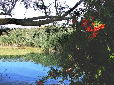 Balaton, csodás képei--Hajni 1
