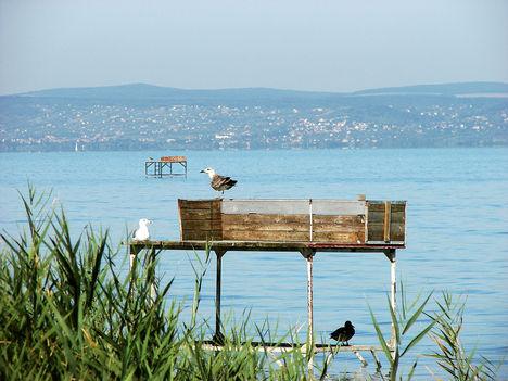 Balaton, csodás képei--Hajni 5