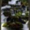 Plitvice, 2004 ősz 11