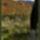 Plitvice_2004_osz_16_367297_62616_t