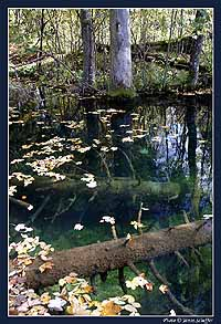 Plitvice, 2004 ősz 7