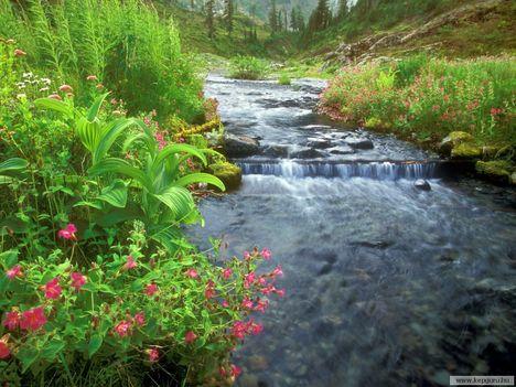 Bagley-patak-Mount_Baker-Washington-USA