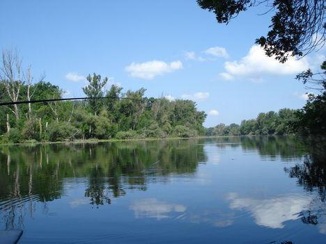 Tőserdő Holt-Tisza