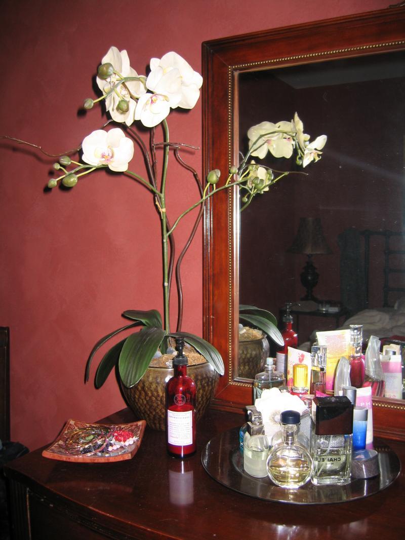 A növények a hálószobájában rossz Feng Shui?