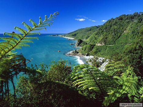 Tengerpart-Paparoa_Nemzeti_Park-Déli-sziget