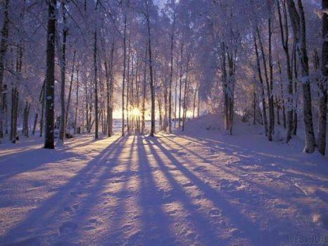 Téli táj 1