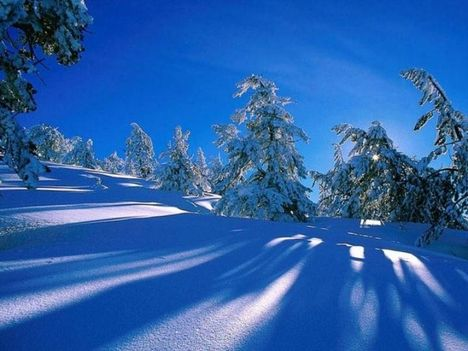 Téli táj 9