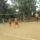 Röplabda verseny és homokvárépítő verseny 2009. 07. 25.