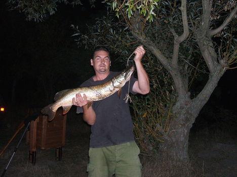 5,2 kg csuka 2009.09.24.