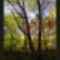 Bükk - ősszel 32