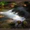 Bükki vízesések 15