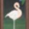 Flamingo - Krisztinának és Lacinak házasságuk alkalmából