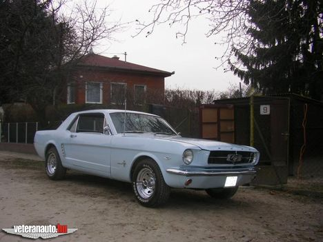 auto_316  1975