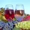 Ukrajnában forgalmazott borok
