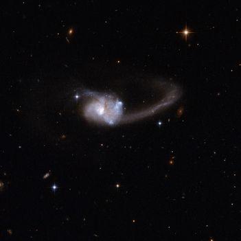 Hubble Interacting Galaxy ESO 286-19
