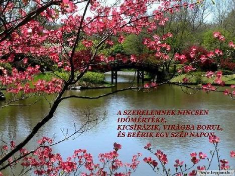 tavaszi virágágzások