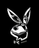 boy Playboy