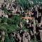 Kőerdő (Shilin), Yunnan tartomány