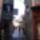Rovinj_sikator_412450_20046_t