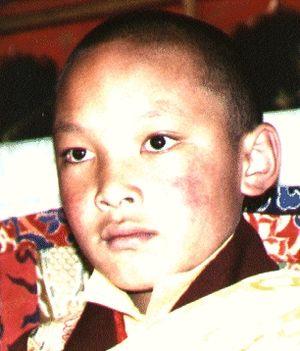 a gyermek Karmapa