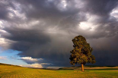 ...a viharokkal úgy vagyok,mint anno a Gallok...D 1