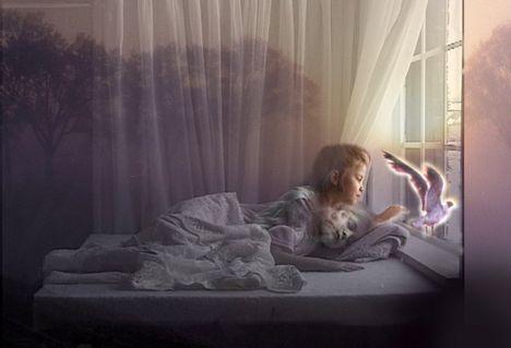 álmok, képek, víziók