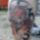 Tattoo_416290_54442_t