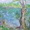 A Duna tavasszal