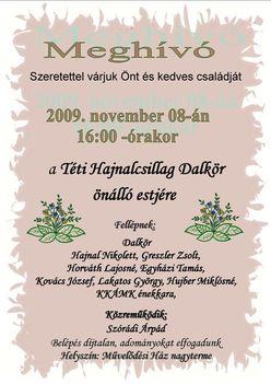20091108dalkormeghivo