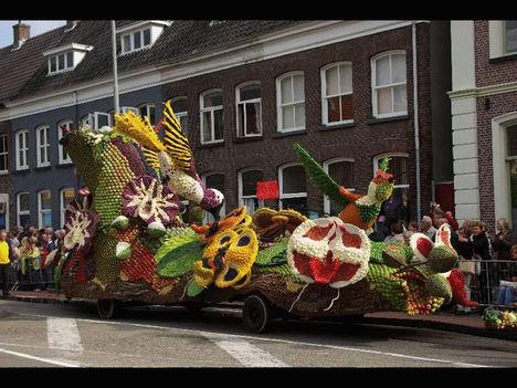 Gyümölcsfesztivál Hollandiában. 10
