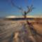 Brazilia - Lencóis Maranhenses sivatag 6