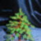 Karácsony fa  1