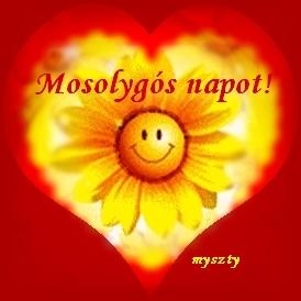 idézetek mosolygós Idézetek képekkel: Mosolygós napot (kép)
