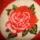 Gyöngy rózsa