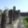 Pompei... 2009. X.31.