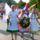 Szüreti Falunap és terményáldás 2009.09.12-13. (Fotók: Farkas Márta)