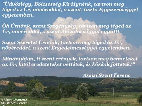 Assisi Szent Ferenc - idézet (02)