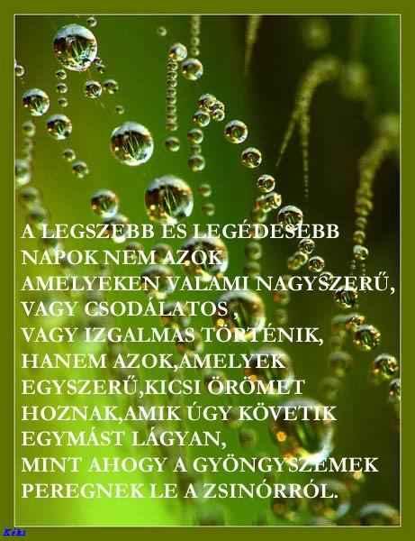 legszebb idézetek képekkel Idézetek képekkel: A legszebb. (kép)