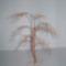 drót fűzfa 2