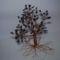 vastag törzsű fa 1