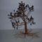 vastag törzsű fa 2