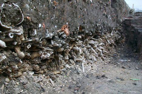 csontok völgye Nyárádszentlászlón az Unitárius templom melletti sírketrben