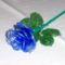 kékrózsa, hogy a szemet gyönyörködtesse