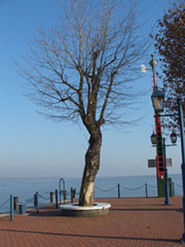 Téli, jeges Balaton 16