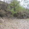Dunakeszi tőzegláp 15